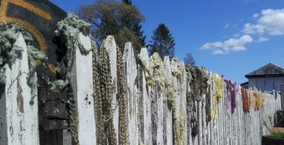 dyeing crafts wool fibre argyll sustainability
