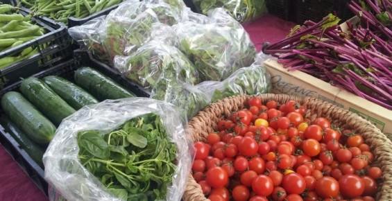 home grown vegetables fruit argyll sustainability