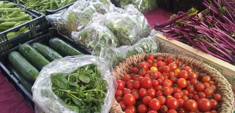 Ardfern Organics vegetables